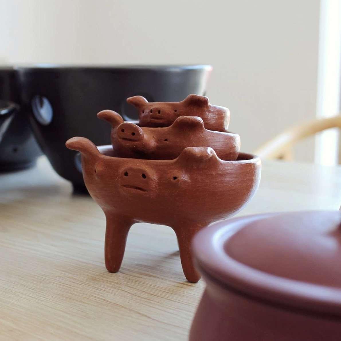 blog ropt colectivo 1050 pigs - indigenous